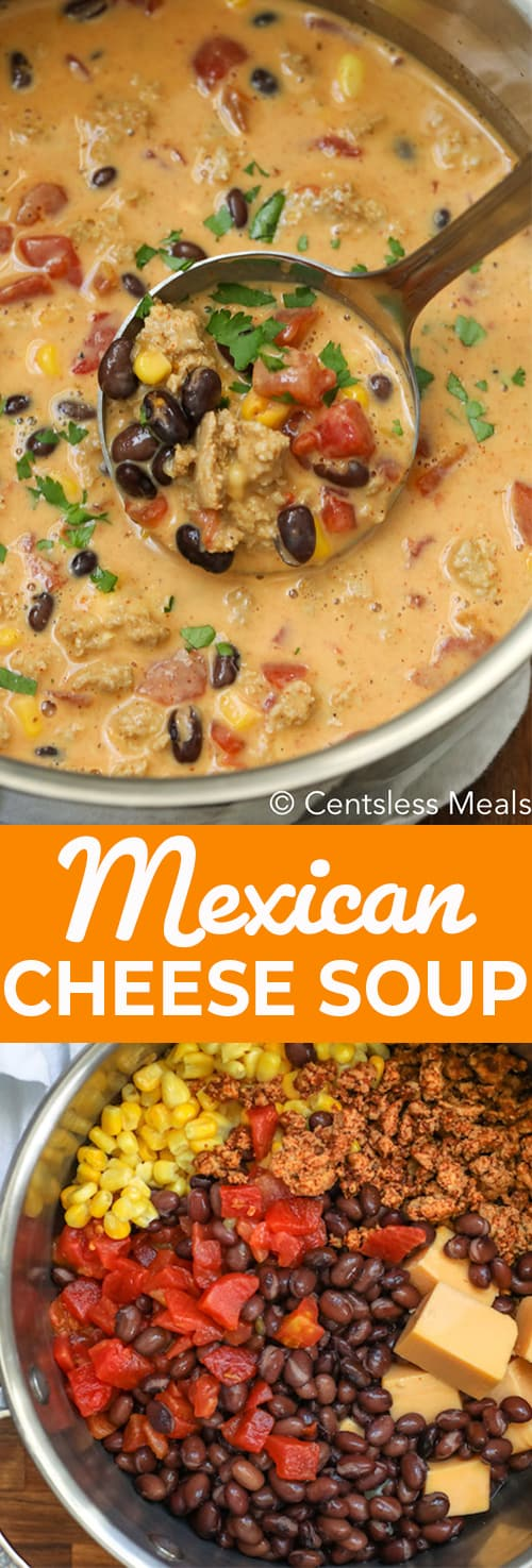 Mexican cheese soup ingredients in a pot and Mexican cheese soup in a pot with a ladle and writing
