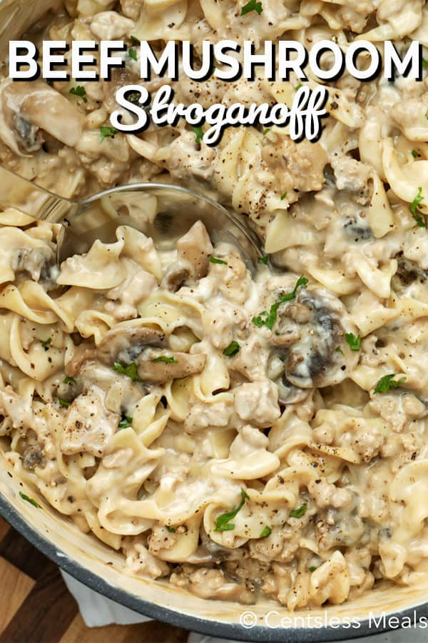 Close up of beef mushroom stroganoff.