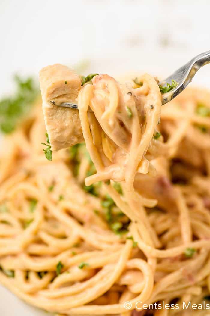 closeup of forkful of Chicken Spaghetti