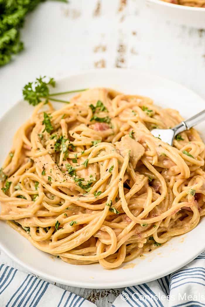 A serving of cheesy chicken spaghetti.