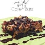 turtle cake bars