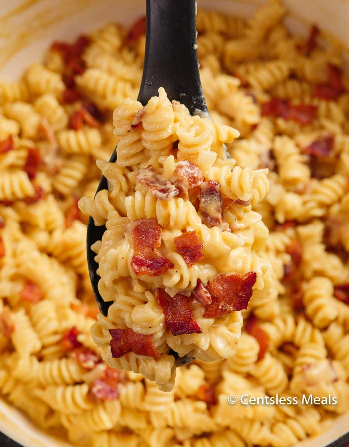 Creamy cheesy beer cheese sauce is tossed with tender pasta and smoky crisp bacon.  This mac and cheese recipe is going to be a staple in your dinner plans!