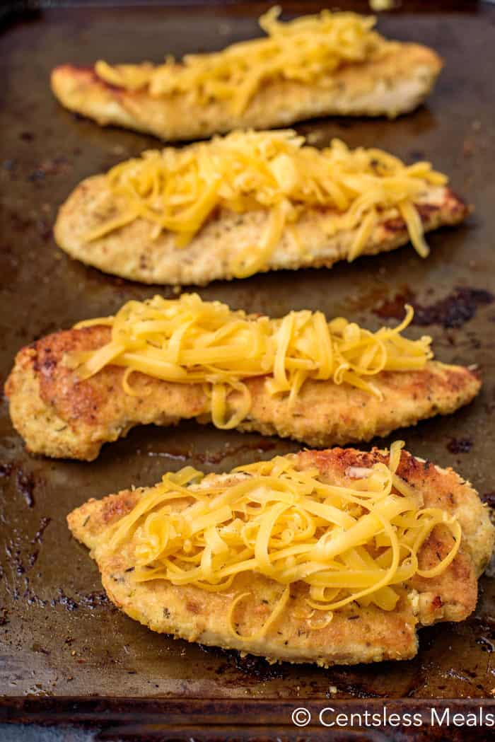 Parmesan crusted chicken on a baking sheet with shredded cheese on top