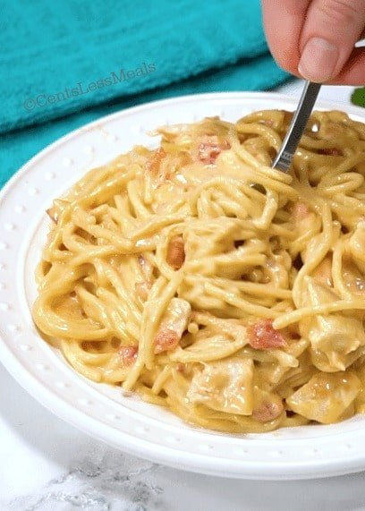 Easy chicken spaghetti on a plate with a fork