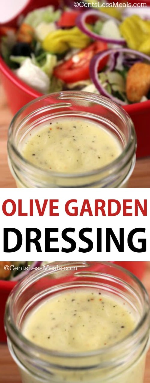 You're going to love this Olive Garden copycat salad dressing recipe! Sure, you can buy the dressing at the restaurant to take home, but why not save some money and make it yourself?