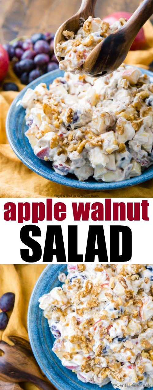 This Apple Walnut Salad is a vintage dessert salad made with cream cheese, yogurt, apples, grapes, walnuts, and sugar! It's a potluck favorite and everyone will want the recipe!