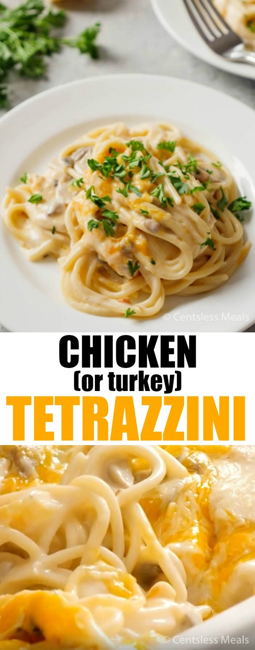 Chicken Tetrazzini is a creamy and delicious casserole made with chicken (or turkey), mushrooms and creamed soup, all served over spaghetti noodles, topped with cheese and baked till bubbly and golden. So simple and delicious your family will love it! #casseroles #chicken #turkey #noodles #quickmealideas