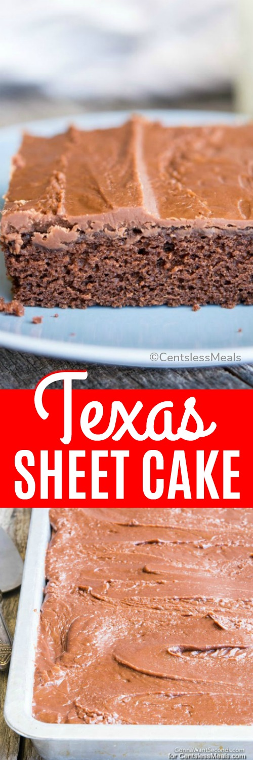 Texas Sheet Cake, a cross between your grandma's chocolate cake and a decadent brownie. #centslessmeals #brownie #chocolatecake #chocolate #easyrecipe #dessert #sheetcake