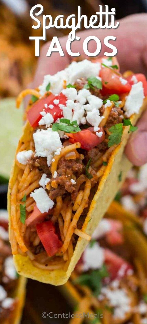 Spaghetti Tacos are messy, fun and extra delicious. Cooked in a rich beef and tomato sauce and served in crispy taco shells with your favorite toppings. #centslessmeals #easyrecipe #beefrecipe #pastarecipe #tacorecipe #simpledinner #withcheese #withtoppings