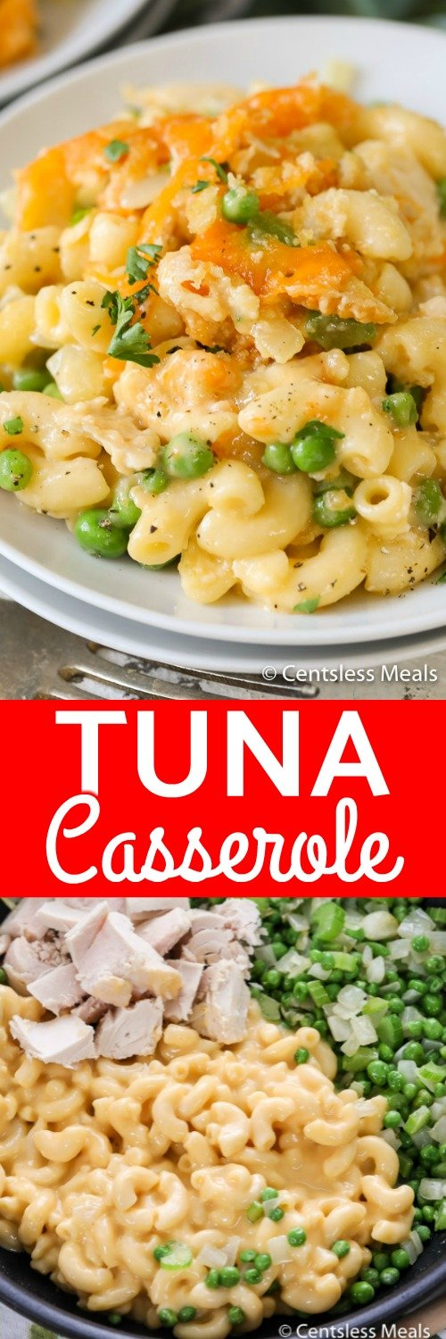 Cheesy Tuna Casserole is super quick to prepare and a meal everyone loves! #centslessmeals #tunacassserole #macandcheese #macaroniandcheese #tunamacaroni