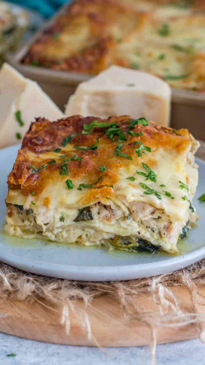 Chicken alfredo lasagna on a blue plate garnished with parsley