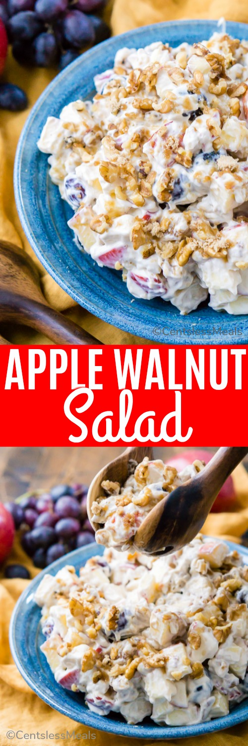 This Apple Walnut Salad is a vintage dessert salad made with cream cheese, yogurt, apples, grapes, walnuts, and sugar! It's a potluck favorite and everyone will want the recipe! #centslessmeals #easyrecipe #easysalad #fruitandnuts #fruitsalad #withnuts #holiday #festive