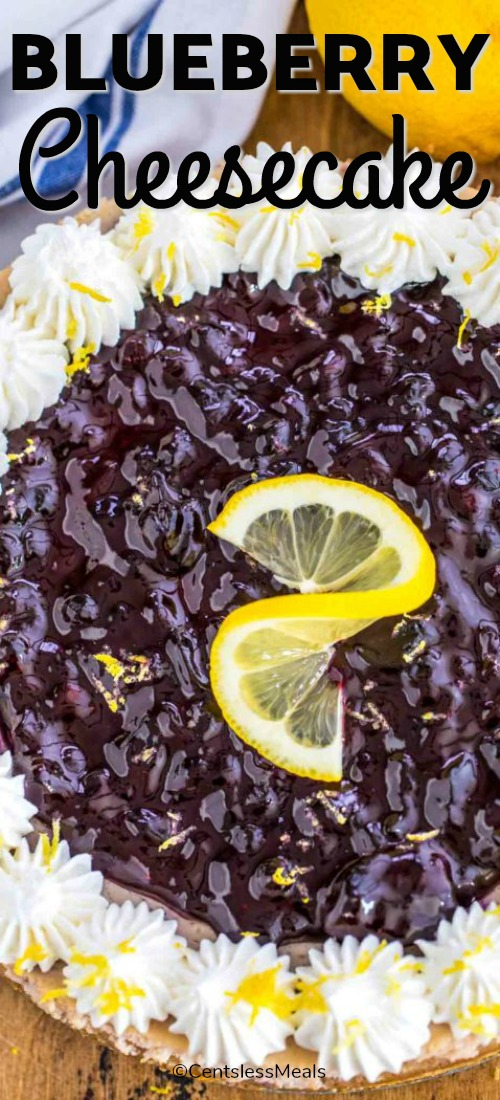 Blueberry Cheesecake is a classic cheesecake that is rich, creamy and very flavorful. Made with fresh lemon zest and juice for a refreshing flavor. It is perfect for family get-togethers or to host a party. #centslessmeals #cheesecakerecipe #easyrecipe #cheesecake #dessert #cheesecakedessert #blueberrydessert #makeahead #partydessert