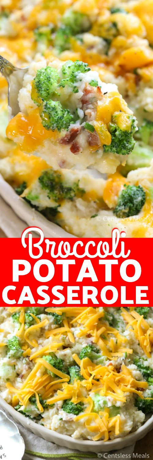Cheesy Broccoli Potato Casserole is a delicious casserole that is sure to become a family favorite! Mashed potatoes, bacon, broccoli and 3 types of cheese create a cheesy potato bake like no other! #centslessmeals #easyrecipe #casserole #broccolicasserole #easycasserole #withbroccoli #withcheese #withbaconbits #makeahead #sidedish