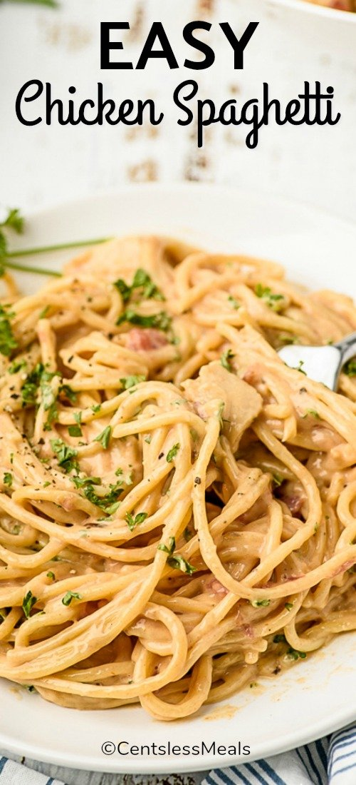 Creamy spaghetti with chicken, garnished with fresh parsley served in a white pasta bowl