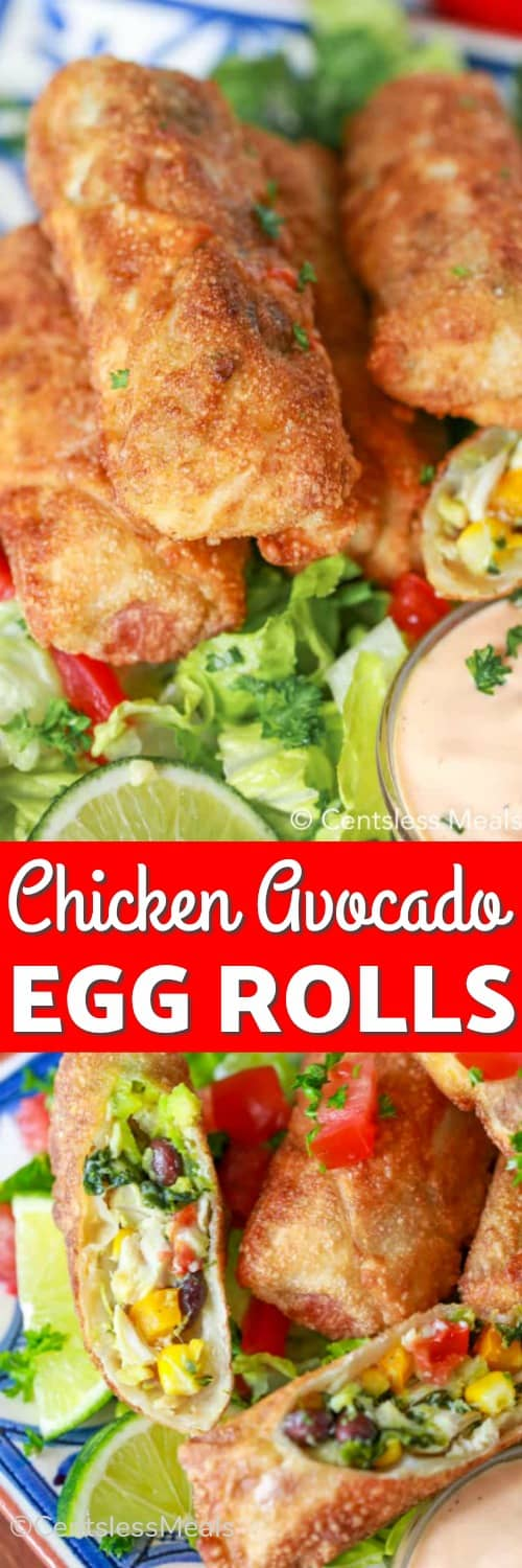 Chicken avocado egg rolls on a plate with a title