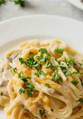 Chicken tetrazzini on a plate with parsley and a title