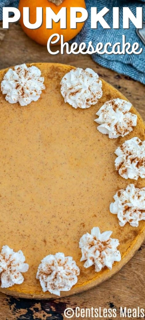 A whole pumpkin cheesecake garnished with whipped cream and cinnamon.