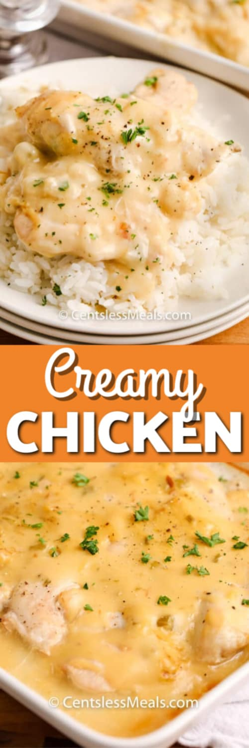 Creamy Chicken served over rice on a white plate garnished with parsley and Creamy Chicken in a white casserole dish under a title.