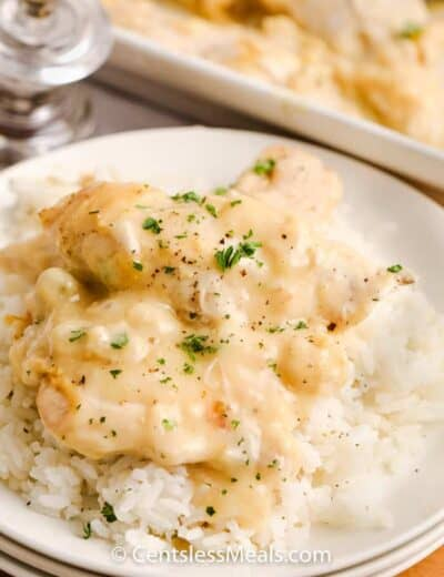 Creamy chicken with rice on a white plate garnished with parsley