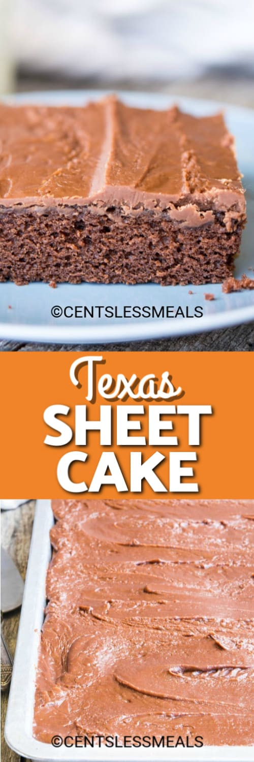 A slice of Texas Sheet Cake on a blue plate and Texas Sheet Cake prepared in a sheet pan under the title.