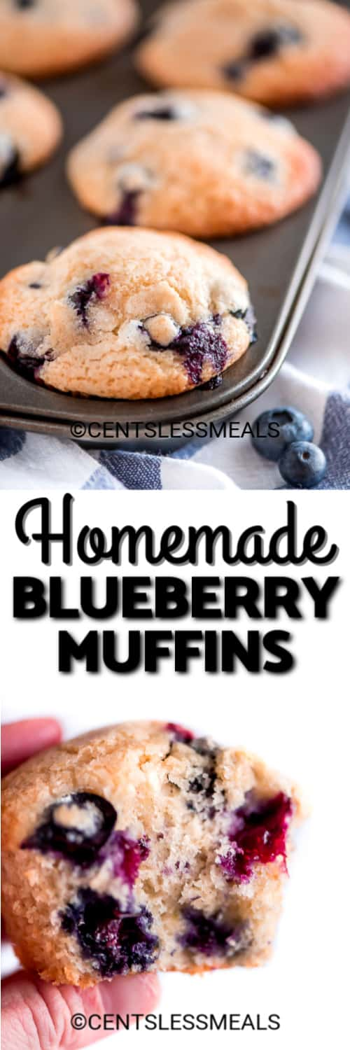 Blueberry Muffins in a muffin tin, and one homemade blueberry muffin being held under the title