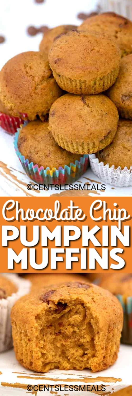 Chocolate Chip Pumpkin Muffins piled on each other, and one muffin with a bite taken out of it under the title.