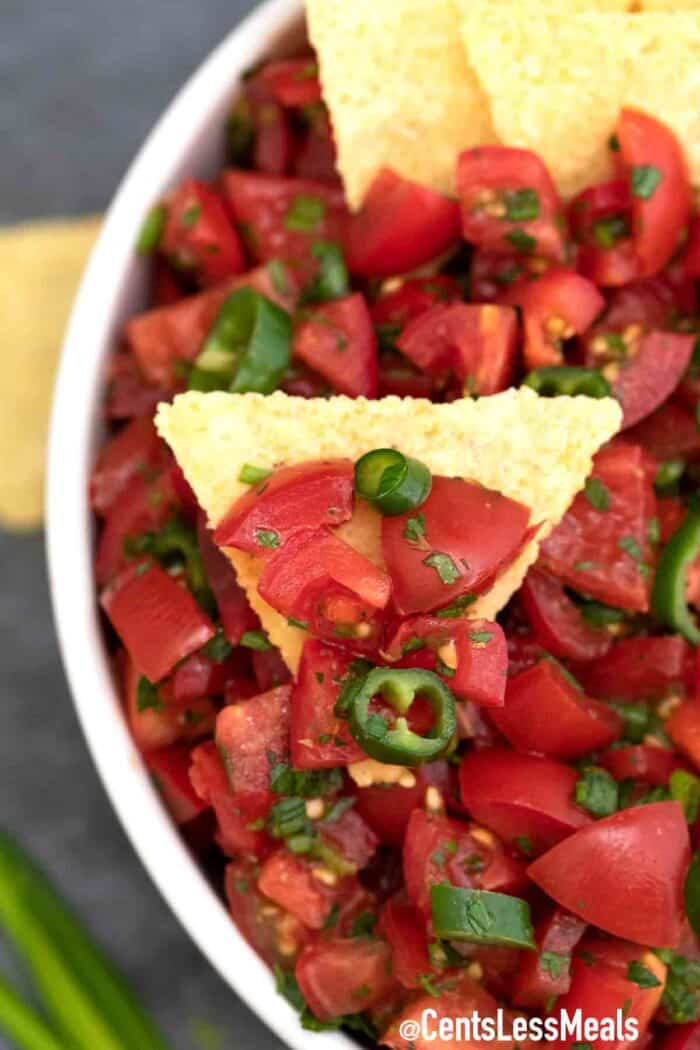 salsa with fresh tomatoes, served on a tortilla chip