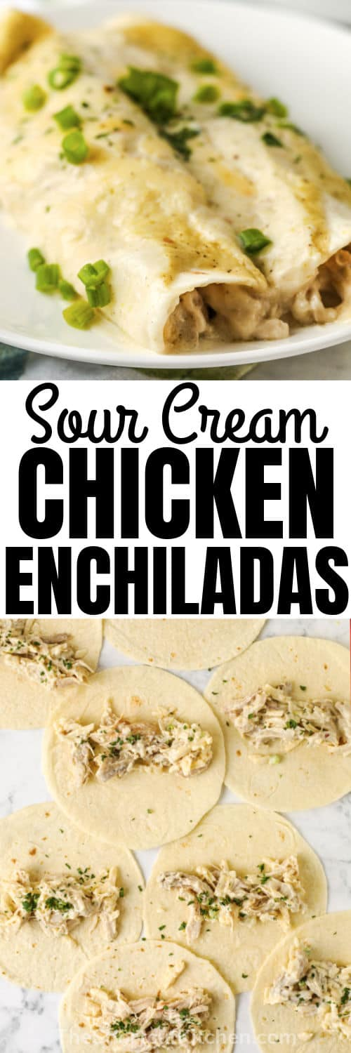 Sour Cream Chicken Enchiladas open and finished with a title