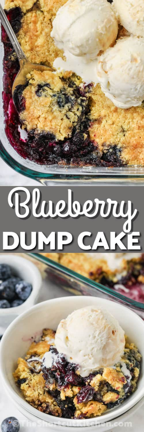 Lemon Blueberry Dump Cake in a casserole dish and plated with a title