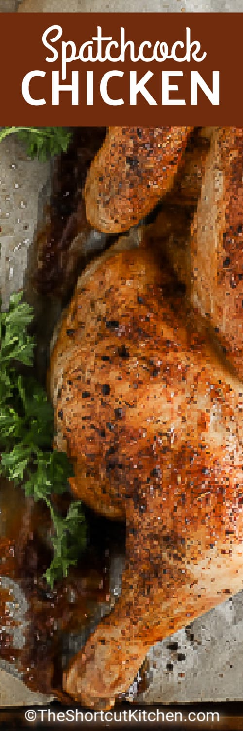 close up of cooked chicken with text