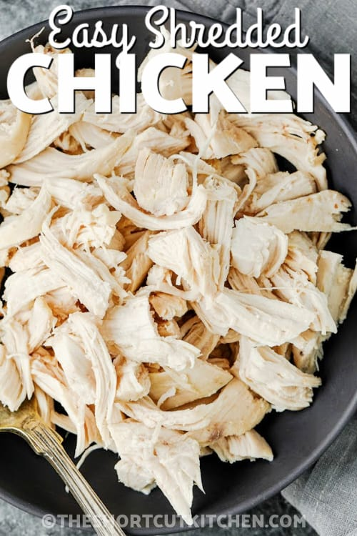 top view of plated Easy Shredded Chicken with writing
