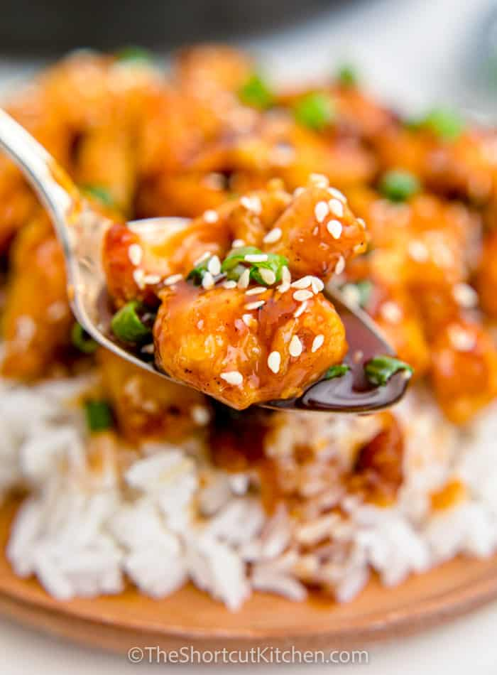 spoonful of Sweet & Sour Chicken